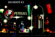 bouteille energy drink 1 litre mode