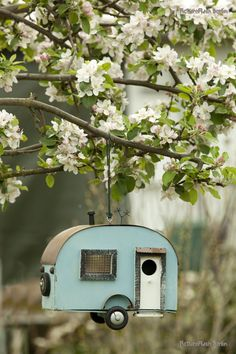 Photograph 'birds house' by Wolfgang Heise on 500px - cute teal birdshouse in a blossoming apple tree (hva)