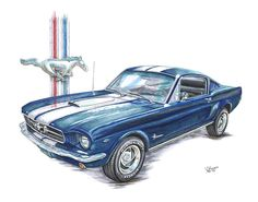 Mustang Drawing - 1965 Ford Mustang by Shannon Watts