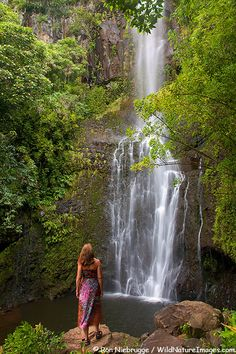 Wailua Falls, Maui, Hawai. Photography Ron Niebrugge