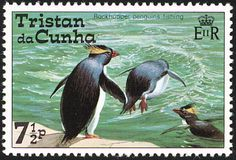 Northern Rockhopper Penguin stamps - mainly images - gallery format