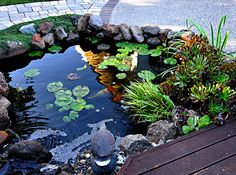 French's Waterscapes - Water Features | Pond Maintenance | Oakland CA - Walnut Creek, CA, United States