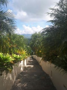 La Vista Highlands, San Carlos City, Negros Occidental, Philippines
