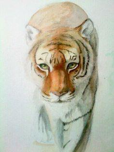 tiger drawing Tiger Drawing, Painting & Drawing, Animal Sketches, Random, Cats, Drawings, Animals, Sketches Of Animals, Gatos