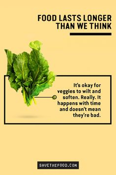It's okay for veggies to wilt and soften. Really. It doesn't mean it's gone bad. Food lasts longer than we think. Visit SaveTheFood.com to learn how to store, freeze, and keep your favorite foods at their best longer. You'll also find helpful tips on ways to revive food into lots of delicious dishes.