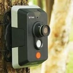 Outdoor bird camera