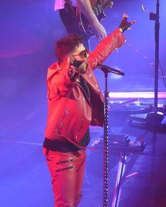 @caroleflo「#QALNottingham #AdamLambert」 Adam Lambert Concert, Adam Lambert 2017, Adam Style, Queen, Daddy, Twitter, Instagram, Life, Fathers