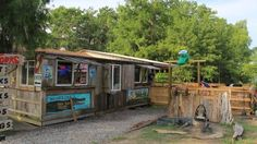 Champagnes Swamp Tour is an Adventure Activity in Breaux Bridge. Plan your road trip to Champagnes Swamp Tour in LA with Roadtrippers. Louisiana Swamp, New Orleans Louisiana, Breaux Bridge Louisiana, Cypress Island, New Orleans With Kids, Champagne, Adventure Activities, Tours, Down South