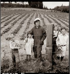 Dorothea Lange photograph of the Arnold children and mother on their newly fenced and newly cleared land with strawberry plant, Western Washington, Thurston County, Michigan Hill, August Farming Family. This image is available as a print. Us History, American History, Old Pictures, Old Photos, Iconic Photos, Vintage Photographs, Vintage Photos, Vintage Postcards, Dorothea Lange Photography