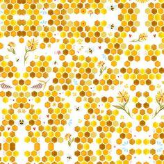 Honey Combs by Katie Daisy
