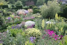 Private orchard garden with flowers Vegetable Garden, Garden Plants, Landscape Design, Garden Design, Sussex Gardens, East Sussex, Rye Sussex, Garden Inspiration, Garden Ideas