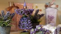 Wisteria´s RoomAmbiente