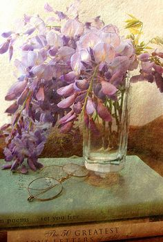 """onlycutes: """" Wisteria (by DebM07) """""""