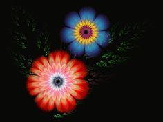 Fractal Art  flowers by Sophie-Y.deviantart.com