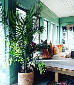 We are LOVING this room from @_mish.mash_ !! The wall color, all of those windows the planter and the palm and those patternful patchwork pillows--we love it all! From the #jungalowstyle feed!