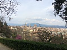 Florence view from above