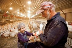 Better Broilers in Tennessee | Farm Flavor