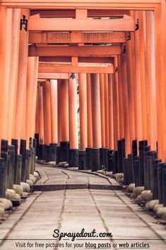 Free Picture of Torii Gates in Fushimi Inari-Taisha Shrine in Kyoto, Japan Japan Tourist Spots, Japan Travel Photography, Japan Beach, Fushimi Inari Taisha, Japan Country, Some Beautiful Pictures, Visit Japan, Amazing Destinations, Free Pictures