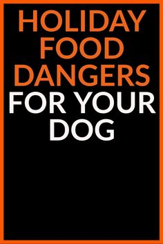 Holiday food dangers for your dog, dog care tips, flea bath for dogs, my dog stinks, dog bathing tips, dog weightloss, choking dog, dog choking, dog cpr, dog diharrea, dog euthanasia, dog toothpast, dog vaccines, Diy Dog Gifts, Best Dog Gifts, Gifts For Dog Owners, Cute Dog Photos, Funny Dog Pictures, Cute Animal Pictures, Love Pet, I Love Dogs, Flea Bath For Dogs