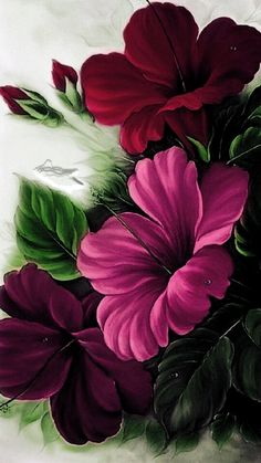 """Képtalálat a következőre: """"diamond painting diy diamond painting""""Floral Wallpapers for iPhone and Android. Click the link below to get the latest Tech News and Gadget Updates!A virtual jigsaw puzzle from JigidiThe Pink Hibiscus - Oils over Acrylic Hibiscus Flower Drawing, Hibiscus Flowers, Exotic Flowers, Watercolor Flowers, Flower Art, Beautiful Flowers, Watercolor Paintings, Hibiscus Wedding, Hibiscus Plant"""