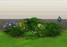 Mod The Sims - Liberated Plants 2