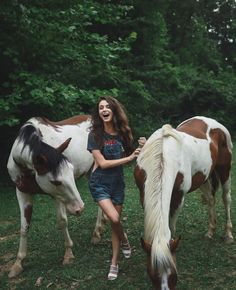 A girl and her horses