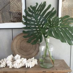 """490 Likes, 5 Comments - ZURI HOME (@zuri_home) on Instagram: """"~Jungle Vibes~ Raided my brothers garden 🌿 #home #entrywaydecor #neutralpalette #textures…"""""""