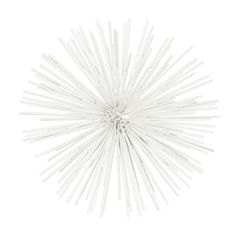Shop for Coated White Finish Metal Large Ornamental Sea Urchin Sculpture. Get free shipping at Overstock.com - Your Online Home Decor Outlet Store! Get 5% in rewards with Club O!
