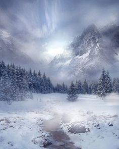 Misty Mountain & Schneetag - Natur/World - # Winter Szenen, Winter Magic, Winter Time, Winter Photography, Landscape Photography, Nature Photography, Photography Tips, Mountain Photography, Photography Backdrops