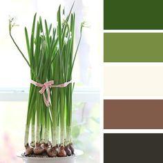 House Color Schemes, Colour Schemes, House Colors, Color Patterns, Color Combinations Home, Color Combos, Red Colour Palette, Color Harmony, Design Seeds