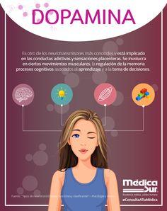 ¿Sabías que la #dopamina no sólo se encarga del #placer? Conoce más sobre este #neurotransmisor y lo que hace en tu cuerpo.  #MédicaSur #ConsultaATuMédica #TipsdeSalud #DatosCuriosos Medicine Notes, Medical Anatomy, Med Student, Pharmacology, Brain Health, Emotional Intelligence, Neuroscience, Physiology, Natural Medicine
