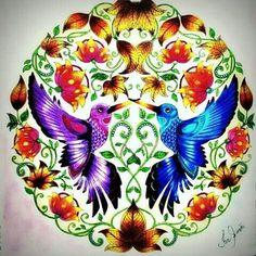 Lindos beija-flores da  @ferrsimoes  . . . ✔ Use #jardimdascores nos marque ou envie direct com sua foto  . .  #JardimSecreto  #esrarengizbahce #secretgarden #enchantedforest #FlorestaEncantadaTop #FlorestaEncantada #FlorestaEncantadabr #colorindo #livro #livrodecolorir #jardimsecretoinspire  #BeijaFlor #nossojardimsecreto #jardimdascores #jardimsecretofans #Regrann