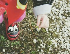 A flower for you.  - Geared up in her ladybug rainboots and raincoat,  this little girl braved the mud to pick the one flower she could find in the middle of winter.