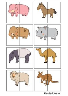 nl , animal match for preschool, free printable animals silly animals animal mashups animal printables majestic animals animals and pets funny hilarious animal Preschool Learning Activities, Animal Activities, Infant Activities, Toddler Preschool, Kids Learning, Activities For Kids, Animal Puzzle, Kids Education, Pre School