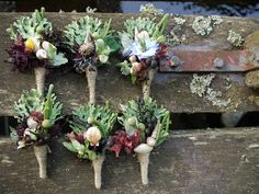 Seashore inspired buttonholes from Pyrus Flowers in Scotland