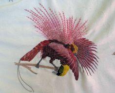 Birds of Paradise with Nikki Delport-Wepener