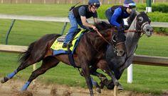 American Pharoah Trainer Adds 'Mor Spirit' To 2016 Kentucky Derby