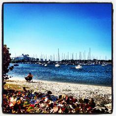 Davis Island Beach Tampa ~ Grew up on Davis Island. Beautiful place.