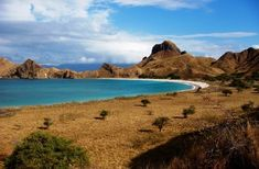 Komodo National Park, Komodo Island, Indonesia. Komodo Island is the home of the largest (and endangered) lizard on Earth, Komodo Dragon.Community Post: 12 Indonesian Paradise Islands You Should Totally Visit