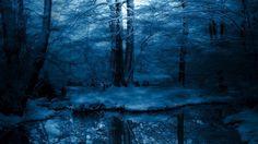 Nature Wallpaper Winter Night Wallpaper Wide Beautiful Wallpapers
