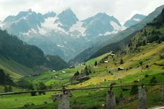 The Swiss Alps    Photo By Darlene Castillo