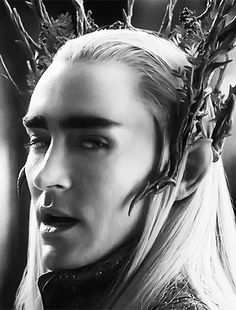 Thranduil, and all his elven-king glory. (Lee Pace as Thranduil in the Peter Jackson Hobbit movie)