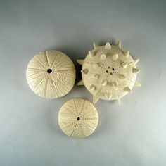 Three Sea Urchins ceramic sculpture Beach House Decor number 2