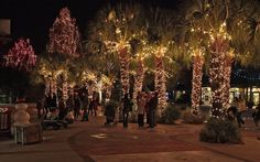 Each year, Riverbanks Zoo & Garden holds Lights Before Christmas. With over 1 million lights, it's a must-see holiday event in Columbia, SC.