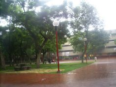 en lluvia