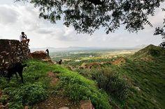 Nordindien im besten Licht. Warum Rajasthan auf deiner Reiseliste an erster Stelle stehen sollte.  #diefotofuechse schreiben über Motive die dich in Rajasthan erwarten  #india #rajasthan #pushkar  Infos im Web: Link in unserer Bio  #blog #fotoblog #photoblog #austrianblogger #reiseblogger #fototipp #fernweh #incredibleindia #reisefotografie #landschaftsfotografie Foto Blog, Mountains, Link, Nature, Travel, Pictures, Indian, Writing, Photo Tips