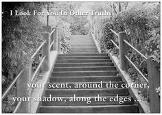 'your scent, around the corner, your shadow, along the edges' -- I Look For You In Other Truths' by Ramon Loyola