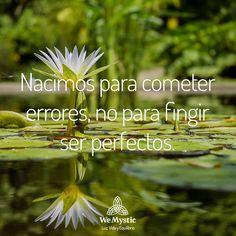 Nacimos para cometer errores, no para fingir ser perfectos