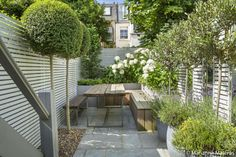 Urban garden: soft neutral tones and low maintenance plants (herbs, small evergreen shrubs) sit among cream Hydrangea. Reclaimed galvanised planters and mirror wall panels help to divide the space. | Garden Club London