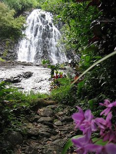 One of my favorite places in Pohnpei!!